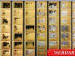 Nadelbefestigungsschrauben für diverse Nähmaschinen